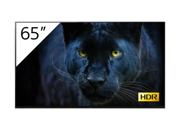 Sony BRAVIA FWD-65A8-T 4K-HDR OLED Prof.-Display 65''