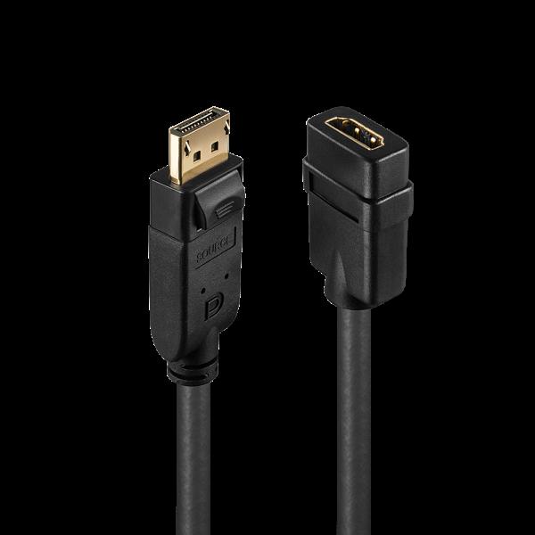 LINDY DisplayPort auf HDMI Konverter