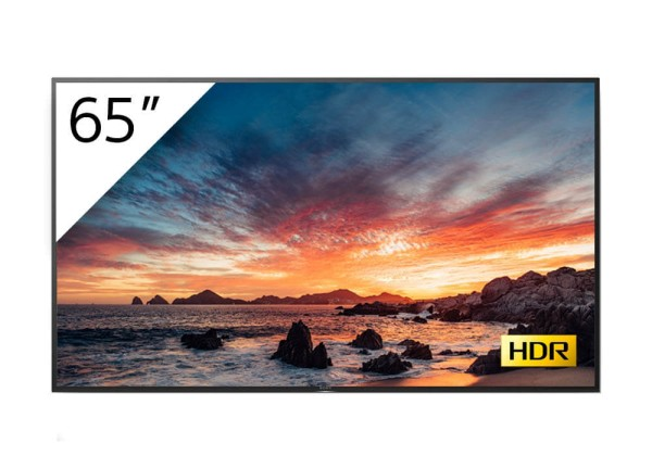 Sony BRAVIA FWD-65X80H-T 4K-HDR LED Prof.-Display 65''