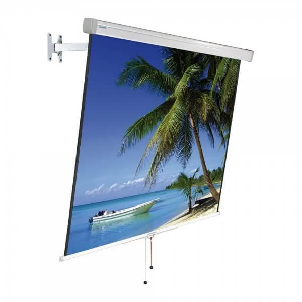 Projecta FlexScreen (1:1)