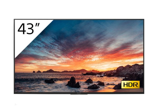 Sony BRAVIA FWD-43X80H-T 4K-HDR LED Prof.-Display 43''