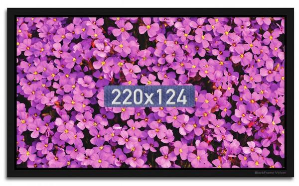 BlackFrame Velvet Hochkontrast-Leinwand für 4K- und 8K-Beamer